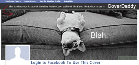 CoverDaddy adds humor to your Facebook cover photo